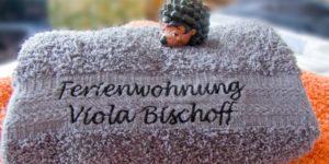 Ihre Spreewald Ferienwohnung Viola Bischoff